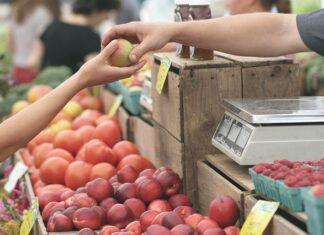 jakie owoce na diecie